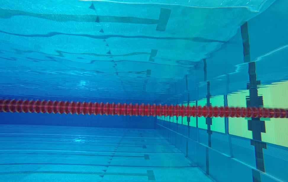 ref_pool.jpg
